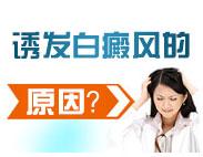 白癜风的发病原因有哪些